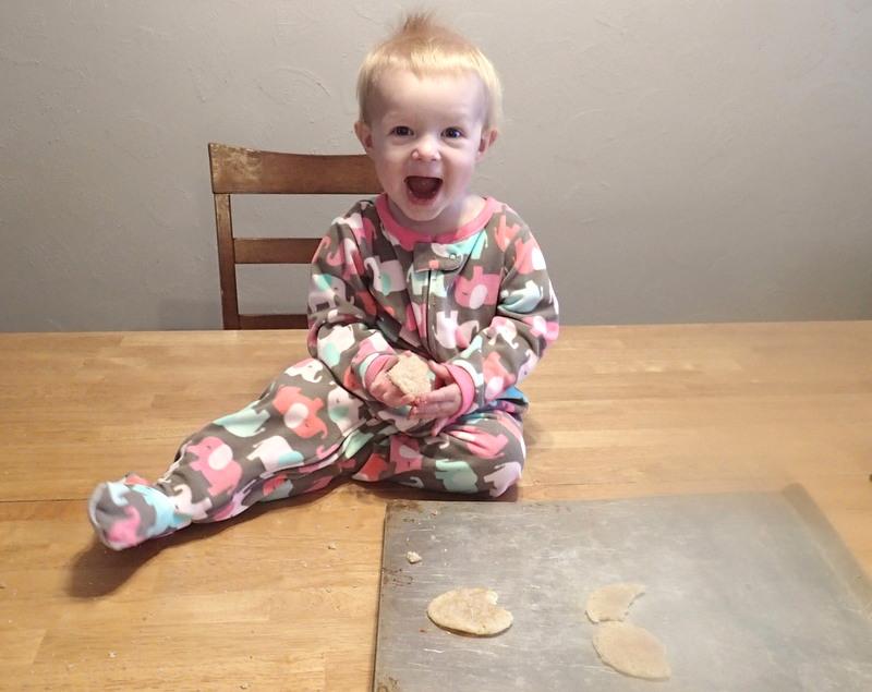 Cookies! ~ Dirty Dish Club
